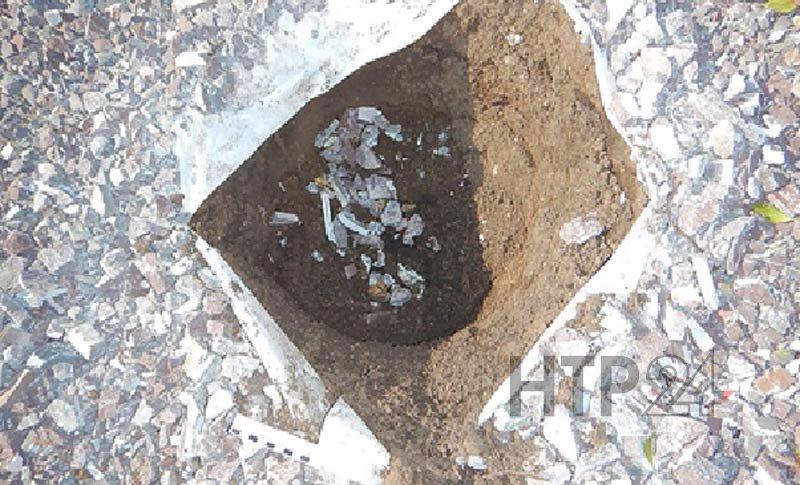 С нетак давно открывшейся площади вНижнекамске украли голубую сосну