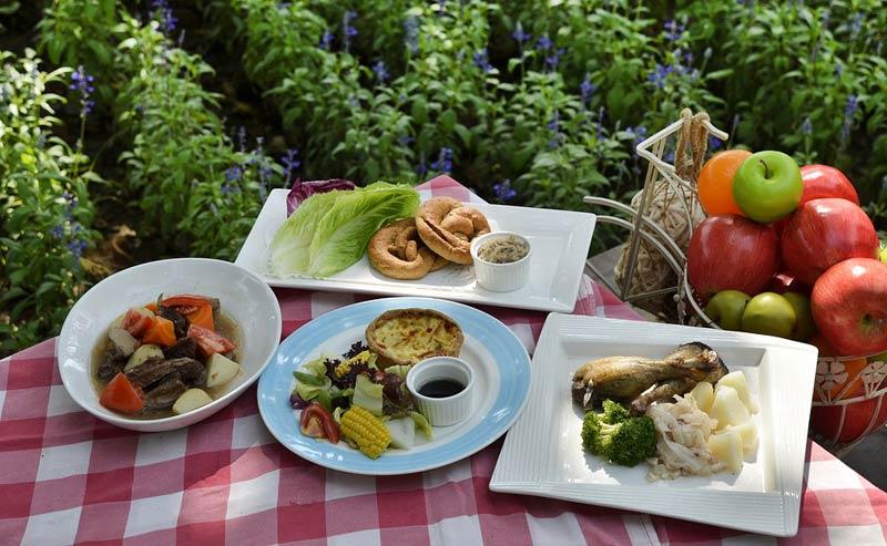 ВНижнекамске состоится общегородской семейный пикник