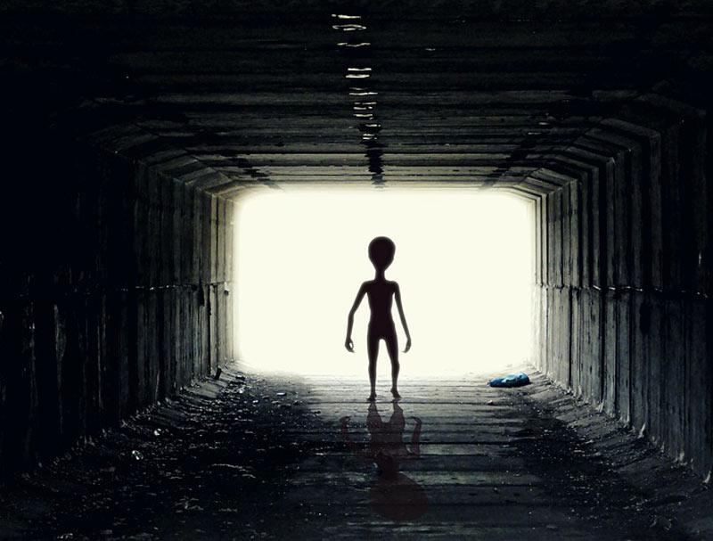 Букмекеры приступили кприёму ставок наответ инопланетян жителям Земли
