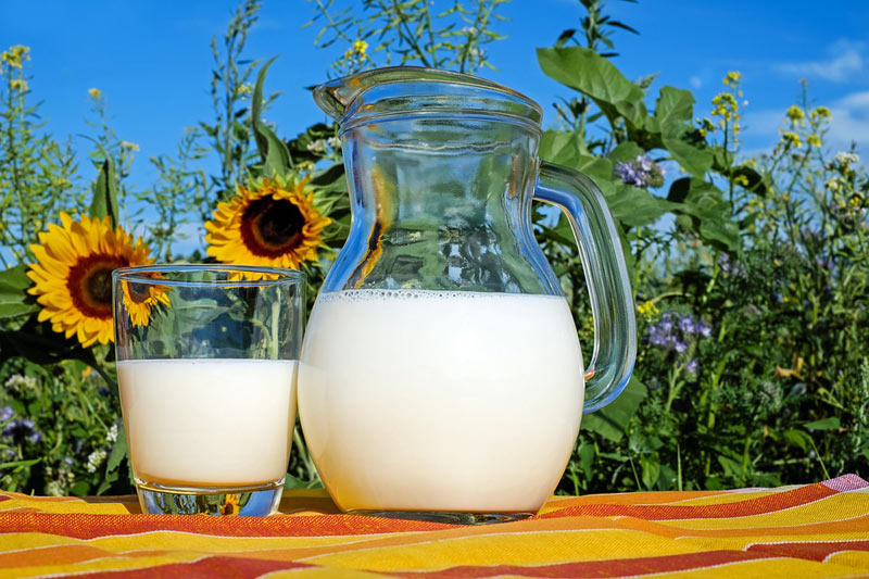 ВТатарстане проверят причины поднятия закупочных цен намолоко