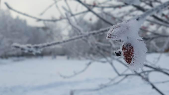 В Нижнекамске -11 градусов, ожидаются слабые осадки