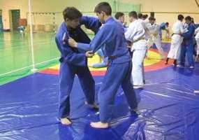 Спортсмены ДЮСШ «Динамо» из Нижнекамска привезли медали с соревнований по самбо и дзюдо