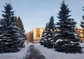 В Нижнекамске идет небольшой снег, на термометрах 8 градусов мороза