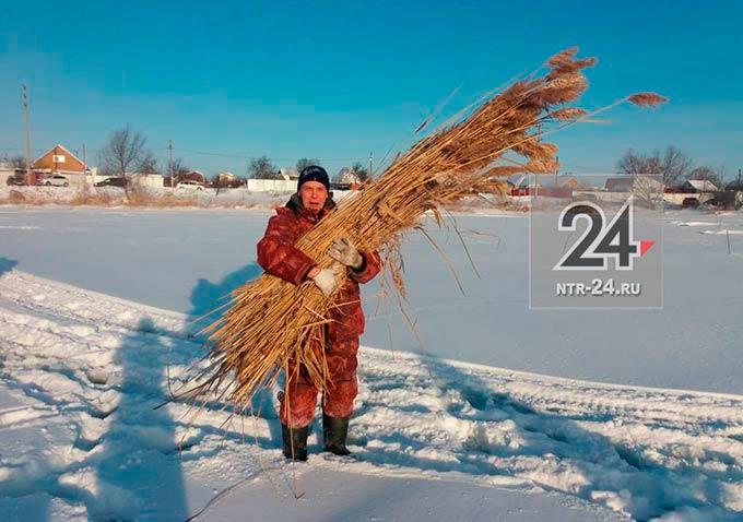 """В Нижнекамске рыбаки спасли от гибели рыбу в """"Пионерском"""" озере"""