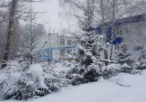 В Нижнекамске 11 градусов мороза, ожидаются осадки