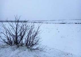 Свалка у села Прости вновь вспыхнула в новогодние праздники