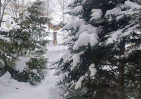 На Нижнекамск надвигается сильная метель