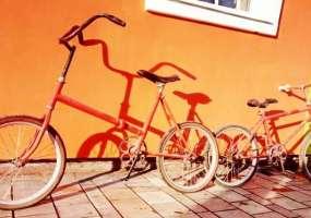 Советы, которые помогут выбрать велосипед