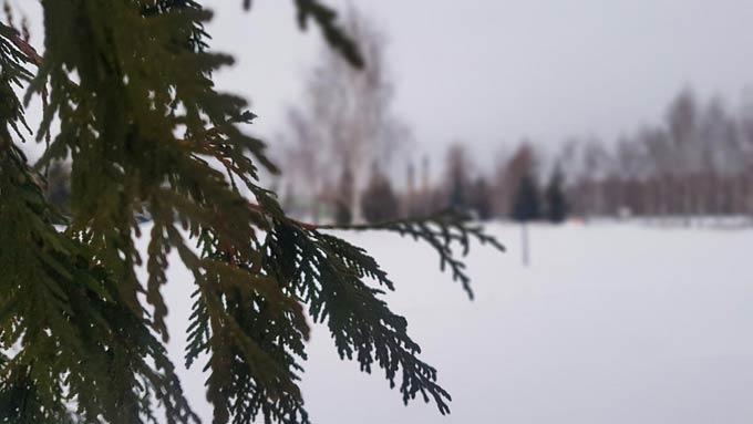 В Нижнекамске -11 градусов, днем начнется метель