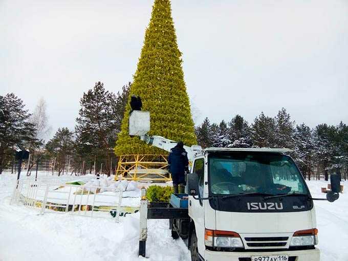 В Нижнекамске из-за белок не смогли разобрать новогоднюю елку