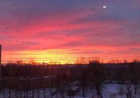 В Нижнекамске -10 градусов, ожидается потепление и снегопад