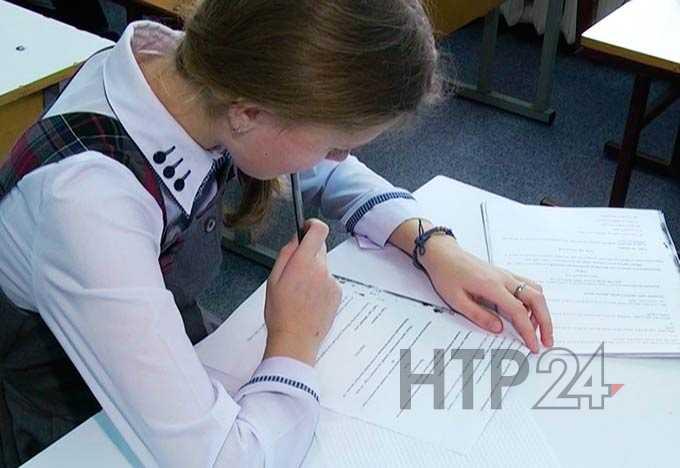 Нижнекамск занимает третье место в Татарстане по показателям на олимпиадах