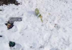 Нижнекамка возмущена жильцами дома, выбрасывающими мусор и контрацептивы за балкон