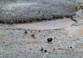 Дорожники латают ямы на улицах Нижнекамска