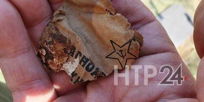 Нижнекамские поисковики установили личность погибшего на войне солдата