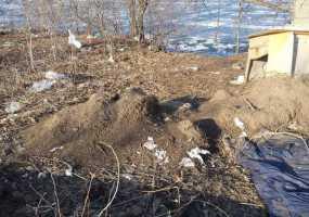 Нижнекамцы захламили берег озера около понтонного моста