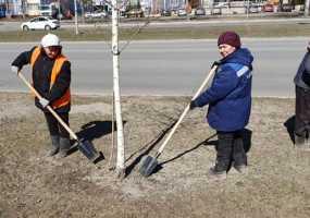 В Нижнекамске приступили к уборке накопившегося за зиму у обочин дорог мусора