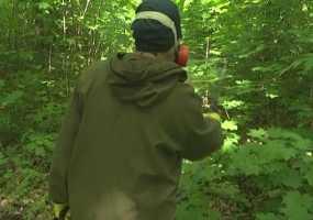 В Роспотребнадзоре Нижнекамска рассказали, когда начнут обработку «зеленых» территорий от клещей