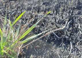 В Нижнекамском районе увеличилось число пожаров