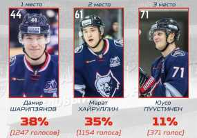 Хоккейные болельщики Нижнекамска определили лучших игроков «Нефтехимика»