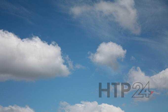 В Нижнекамске установится июльская жара