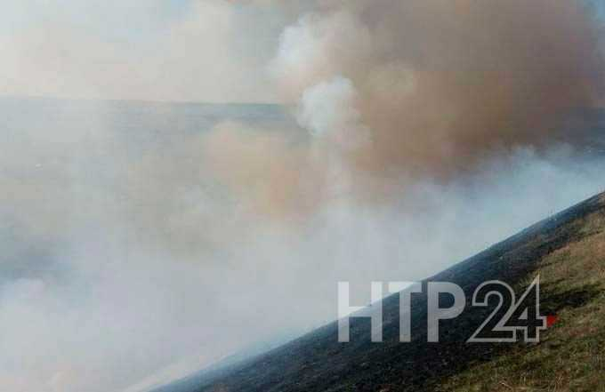 Число возгораний сухой травы в Нижнекамском районе выросло почти в два раза