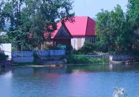 Двое жителей Нижнекамска пострадали от укусов гадюк