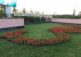 Жители и гости Нижнекамска с размахом отметят День химика