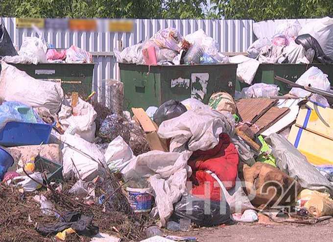 Нижнекамские дачники утопают в мусоре. «Гринта» считает виноватыми самих садоводов