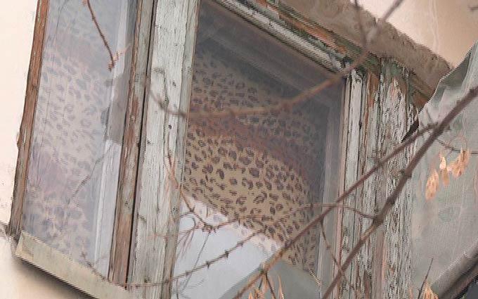 Прохожий в Североуральске поймал выброшенного из окна младенца