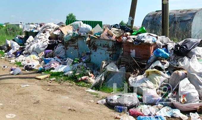 Садоводческие товарищества Нижнекамска утопают в мусоре
