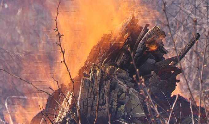 В Нижнекамске повышен уровень пожароопасности лесов