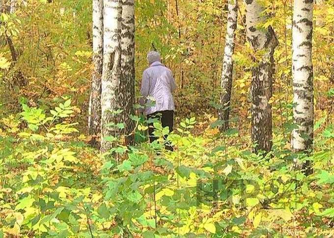 В Татарстане за несколько лет исчезли почти 500 человек, среди них 12 детей