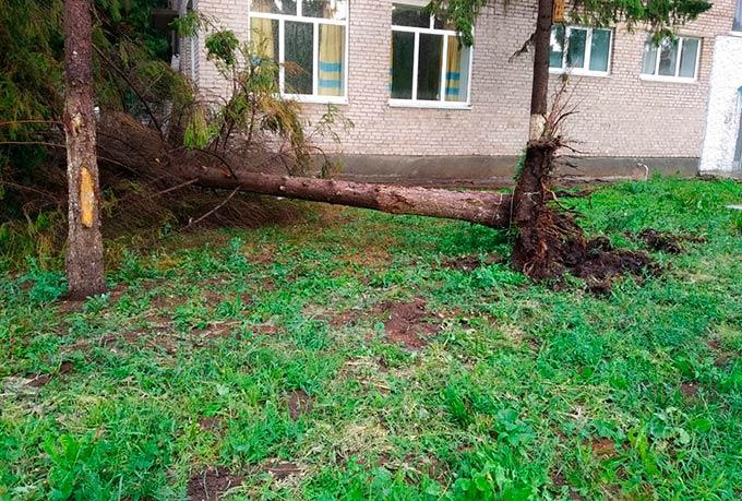 Опубликованы фото и видео последствий урагана в Татарстане