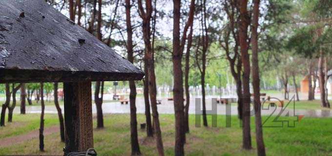 В Нижнекамске +13 градусов, идет дождь