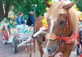 По центральным улицам Нижнекамска проехали лошадиные упряжки