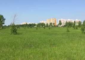 В Нижнекамске возможны град, грозы и шквалистый ветер