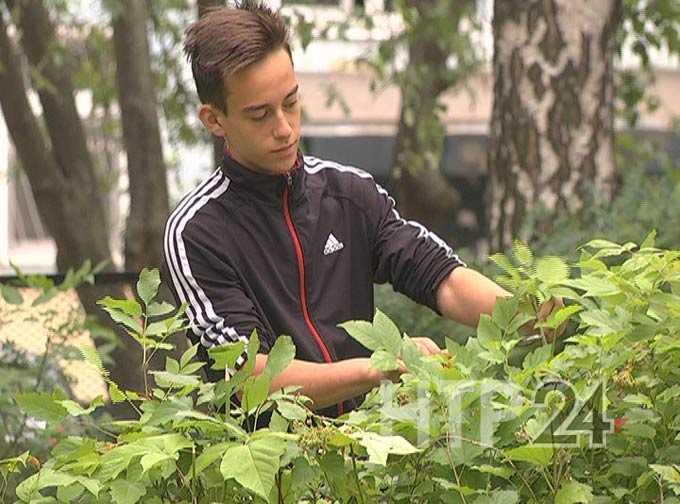 Более тысячи нижнекамских школьников летом решили устроиться на работу