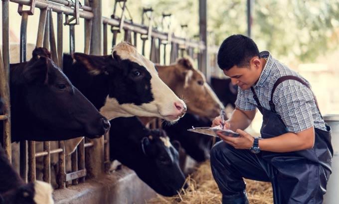 В Татарстане объявлен конкурс по программе «Развитие сельскохозяйственной потребительской кооперации»