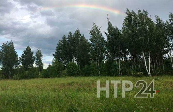 В Татарстане ожидаются сильные дожди и туман