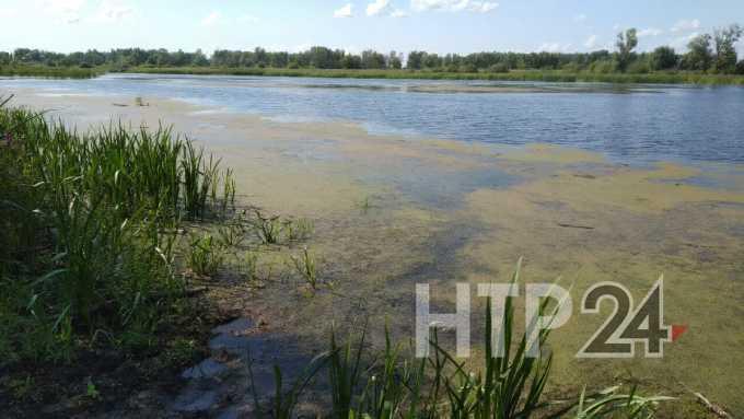 Рыбак найден мертвым в Нижнекамском районе