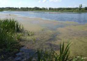 Рыбак найдем мертвым в Нижнекамском районе