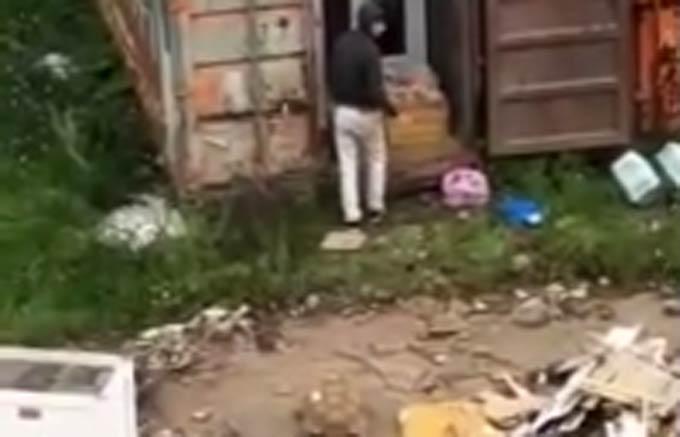 В Нижнекамске очевидцы увидели, где прятали сбежавших из зоопарка зверей