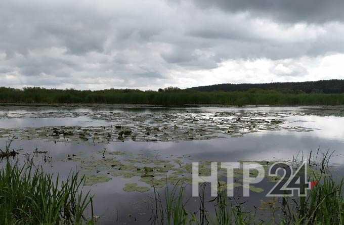 Синоптики предупреждают о тумане в Татарстане