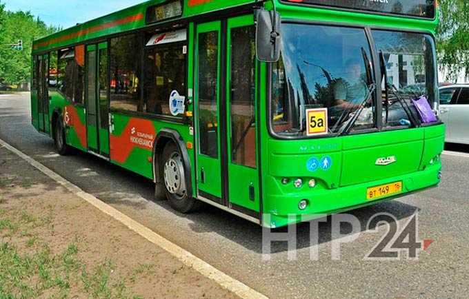 """В Нижнекамске появится новый автобусный маршрут, а на помощь """"НПАТП"""" придет частный перевозчик"""