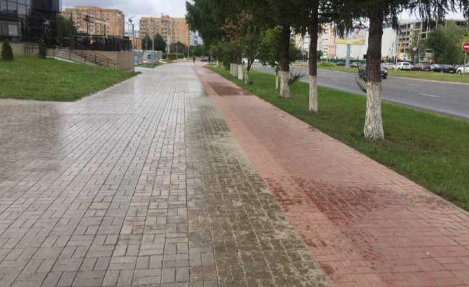 В России электросамокаты, гироскутеры и сегвеи могут внести в правила дорожного движения