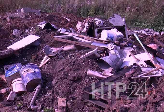 Нижнекамец заработал на мусоре, которые неизвестные свалили на земле исполкома Нижнекамска