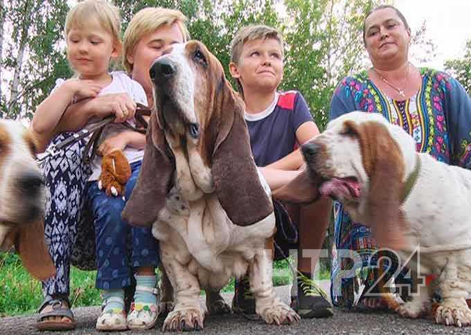 Собаки могут излечить своих хозяев от ряда болезней