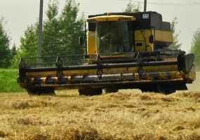 Аграрии Нижнекамского района ожидают богатый урожай