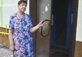 Жильцов дома на ул.Менделеева в Нижнекамске сводит с ума новая дверь
